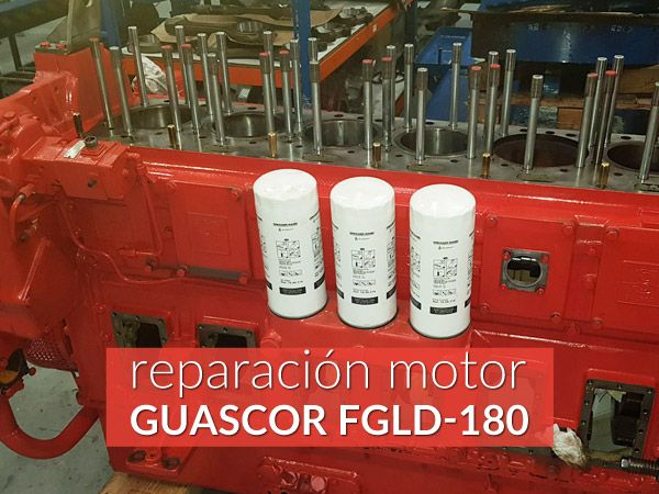 repair gas engine guascor
