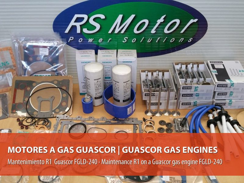 Maintenance type R1 on a Guascor gas engine type FGLD-240